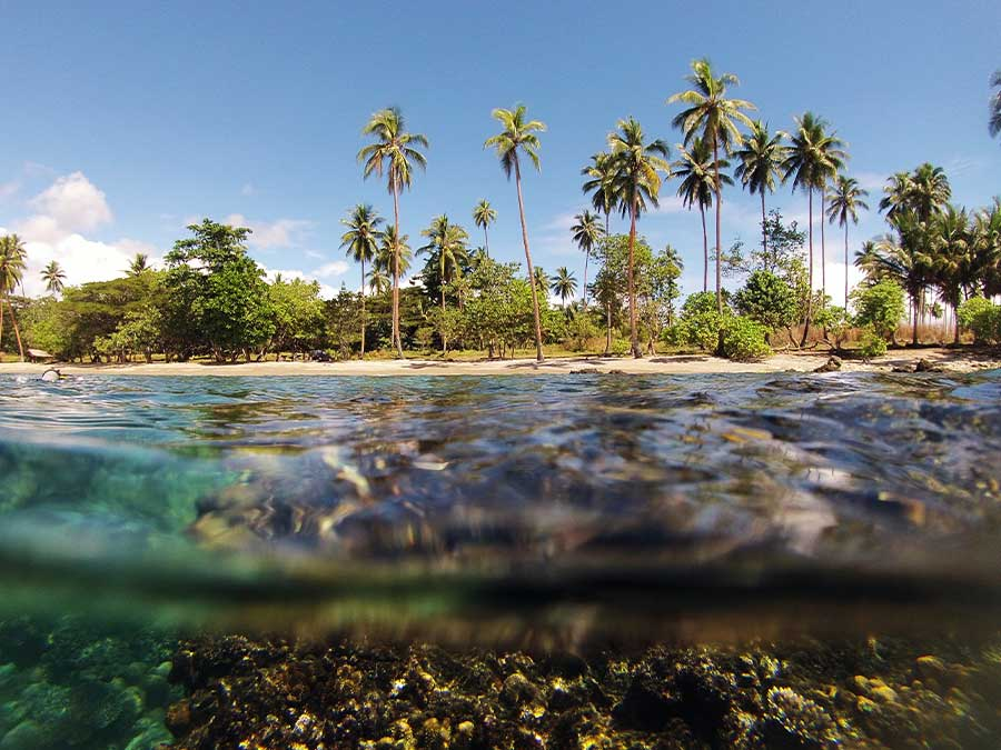 Guadalcanal, Solomon Islands
